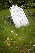 An old derelict grave in the Skippers cemetery with daisy's & long grass, Skippers, Queenstown Lakes District, Otago, South Island, New Zealand.