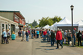 USA, Washington State, Ilwaco, Saturday market at the Port of Ilwaco located on the Southwest coast of Washington just inside the Columbia River bar