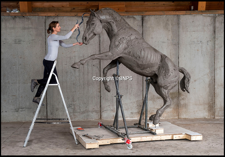 BNPS.co.uk (01202 558833)<br /> Pic: Phil Yeomans/BNPS<br /> <br /> Taking shape - Britains most threatened breed of horse to be immortalised in bronze.<br /> <br /> A beautiful stallion of Britain's rarest breed of horse is being immortalised in sculpture to honour their tremendous sacrifice as the war horses of the Great War.<br /> <br /> Sculptor Amy Goodman studied Icarus, a Cleveland Bay stallion, bred at the Cholderton Stud in Wiltshire to create the spectacular 10ft tall statue of the muscular horse rearing up. <br /> <br /> Described as 'Critically Endagered' by the RBST, Cholderton is the oldest stud still breeding these beautiful horses in Britain.<br /> <br /> She has used scaffolding poles, welded steel and mesh wire to make the shape of the rearing horse before covering the frame in 700kg of clay.