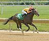 Mason winning at Delaware Park on 6/7/12
