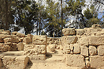 Israel, Shephelah, a large mausoleum in Hurvat Ha-Gardi, a short distance from the city of Modi'in, might be the Tomb of the Maccabees, Matityahu the Hasmonean and his five sons from the ancient city of Modi'in, who led the uprising against Greek rule in the 2nd century BC