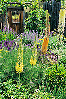 Clemens garden - Santa Fe, NM - photos