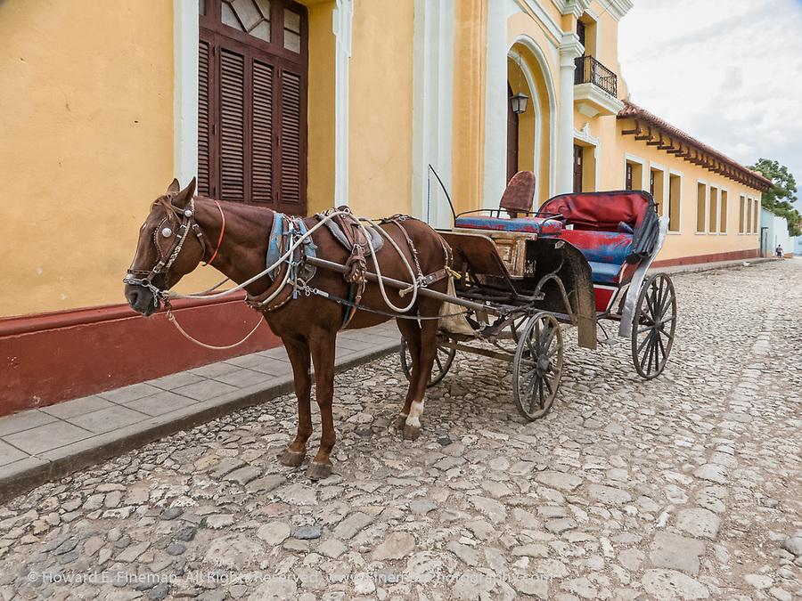 Tourist taxi