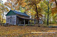 63895-16519 Cabin at Log Cabin Village in fall Kinmundy IL