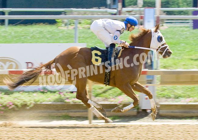 Peter Boy winning at Delaware Park on 9/10/12