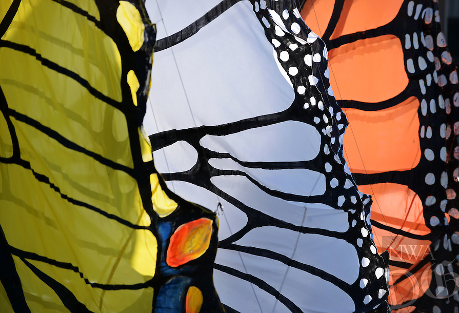 NWA Democrat-Gazette/BEN GOFF @NWABENGOFF<br /> A closeup look a the butterfly wings of three creations from the Bike Zoo from Austin, Texas, on Saturday May 14, 2016 at the starting area for the spring Square 2 Square bike ride in downtown Fayetteville. Participants in the ride traveled 32 miles from downtown Fayetteville to downtown Bentonville on the Razorback Regional Greenway, with festivities along the way and at the finish. The Bike Zoo was offering rides on a variety of creative pedal-powered animals at stops along the greenway.