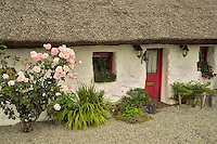 Irish cottage with thatched roof. Oughterard, Ireland