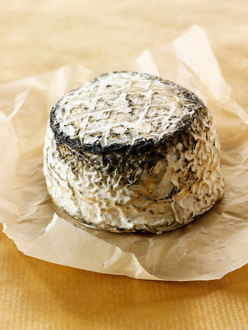 Farm goats cheese from Normandy French traditional regonal Cheeses