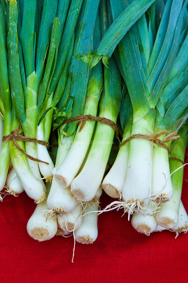 Fresh Food Locally Grown - Produce, fruit and veggies at Farmer's markets, from the farm to the table - Leeks