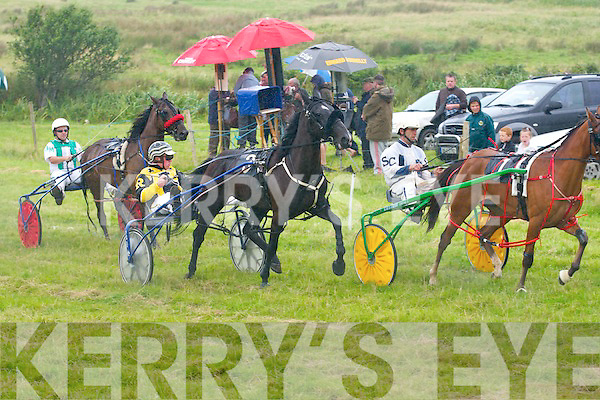 Harness races in camp on Sunday. ....