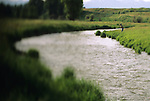 A man fishes along Flat Creek in Jackson Hole, Wyoming (selective focus).