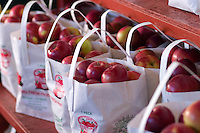 South Hero Apple Festival is held in early October in the Lake Champlain Islands, Vermont