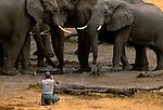 Art Wolfe on location, Botswana
