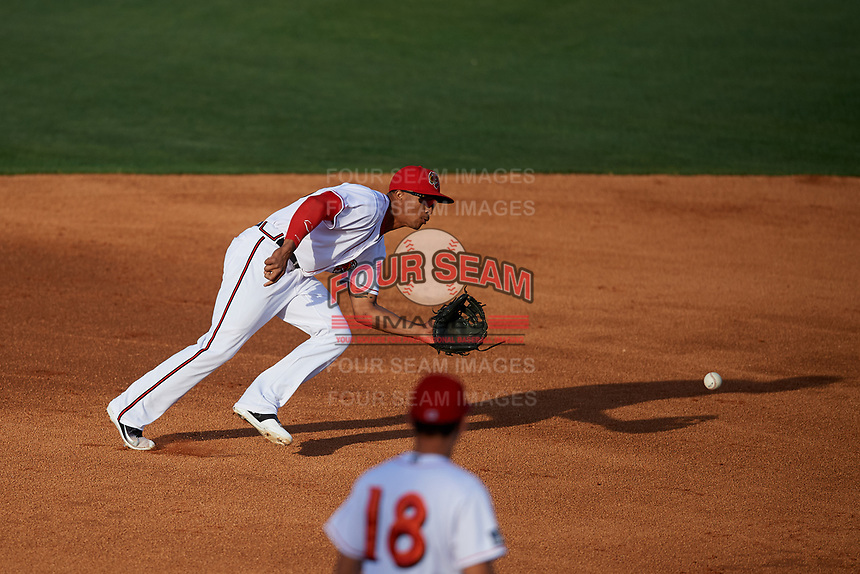 Florida Fire Frogs shortstop Ray-Patrick Didder (13) fields a ground ball during a game against the Palm Beach Cardinals on May 1, 2018 at Osceola County Stadium in Kissimmee, Florida.  Florida defeated Palm Beach 3-2.  (Mike Janes/Four Seam Images)
