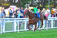 Winner of The Graham Fitch Birthday Celebration Classified Stakes Pempie ridden by Oisin Murphy and trained by Andrew Balding during Evening Racing at Salisbury Racecourse on 25th May 2019