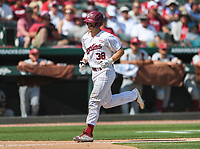 NWA Democrat-Gazette/CHARLIE KAIJO South Carolina catcher Hunter Taylor (38) scores during the second game of the NCAA super regional baseball, Sunday, June 10, 2018 at Baum Stadium in Fayetteville. Arkansas fell to South Carolina 5-8.