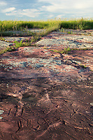 Petroglyphs on Sioux Quartzite, Jeffers Petroglyphs Historic Site, Minnesot