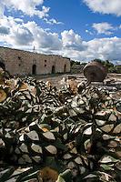 Santa Isabel, mezcal distillery. The Mezcal Route, San Luis Potosi/Zacatecas, Mexico.