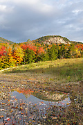 Autumn foliage along the Kancamagus Highway (route 112), which is one of New England's scenic byways. Located in the White Mountains, New Hampshire USA
