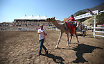Rich Martin leads a camel ride before start of the 54th International Camel Races in Virginia City, Nev., on Friday, Sept. 6, 2013.  <br /> Photo by Cathleen Allison