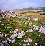 Limestone scenery near Malham, Yorkshire Dales national park, Yorkshire, England