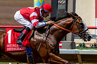 08-11-18 Best Pal Stakes at Del Mar
