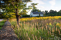 Late afternoon light hits an old barn in New Hampshire's Seacoast Region in late summer.  Goldenrod fills the foreground fields.