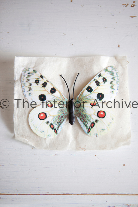 A butterfly taken from a trip to Malaysia, has been pasted onto a piece of Indian paper