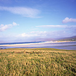 Isle of Harris, Western Isles, Outer Hebrides, Scotland, Machair grassland,