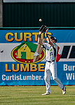 3 September 2018: Vermont Lake Monsters outfielder Devin Foyle gets the first out in the 9th inning against the Tri-City ValleyCats at Centennial Field in Burlington, Vermont. The Lake Monsters defeated the ValleyCats 9-6 in the last game of the 2018 NY Penn League regular season. Mandatory Credit: Ed Wolfstein Photo *** RAW (NEF) Image File Available ***