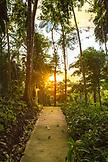 BELIZE, Punta Gorda, Toledo, the jungle surrounded pathway leading around Belcampo Belize Lodge and Jungle Farm