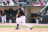 April 17th, 2008:  Outfielder Jason Pridie (11) of the Rochester Red Wings, Class-AAA affiliate of the Minnesota Twins, at bat during a game at Frontier Field in Rochester, NY.  Photo by:  Mike Janes/Four Seam Images