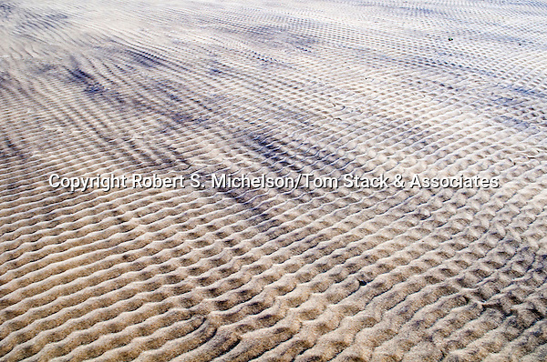 Sand ripples, South Beach, Chatham, Massachusetts