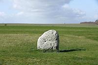 Station Stone, Stonehenge, Neolithic and Bronze Age megalithic monument, 3050 - 1500 BC, Salisbury, Wiltshire, England, UK. Picture by Manuel Cohen