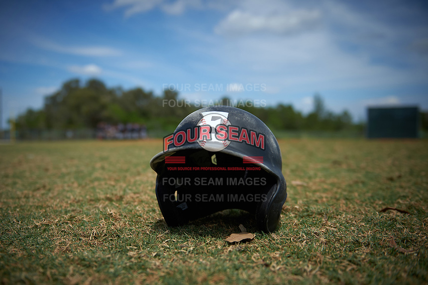 Edgewood Eagles batting helmet sits on the grass after the second game of a doubleheader against the Plymouth State Panthers on April 17, 2016 at Lee County Player Development Complex in Fort Myers, Florida.  Plymouth State defeated Edgewood 16-3.  (Mike Janes/Four Seam Images)