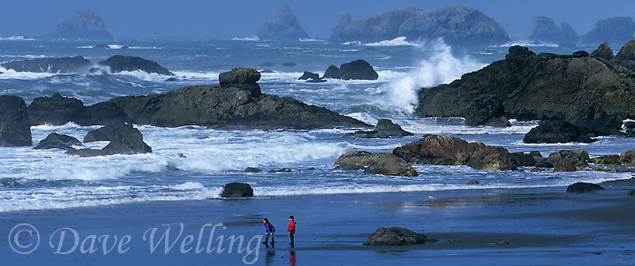 972500004 panoramic of children enjoying the beach and surf with sea stacks in the background at harris state beach near brookings along the southern pacific coast of oregon