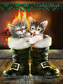 GIORDANO, CHRISTMAS ANIMALS, WEIHNACHTEN TIERE, NAVIDAD ANIMALES, paintings+++++,USGI2821M,#xa#