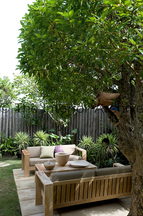 A boy climbing a tree which hangs over a pair of modern cushioned benches on a patio in the garden