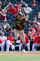 Trent Grisham - San Diego Padres 2020 spring training (Bill Mitchell)