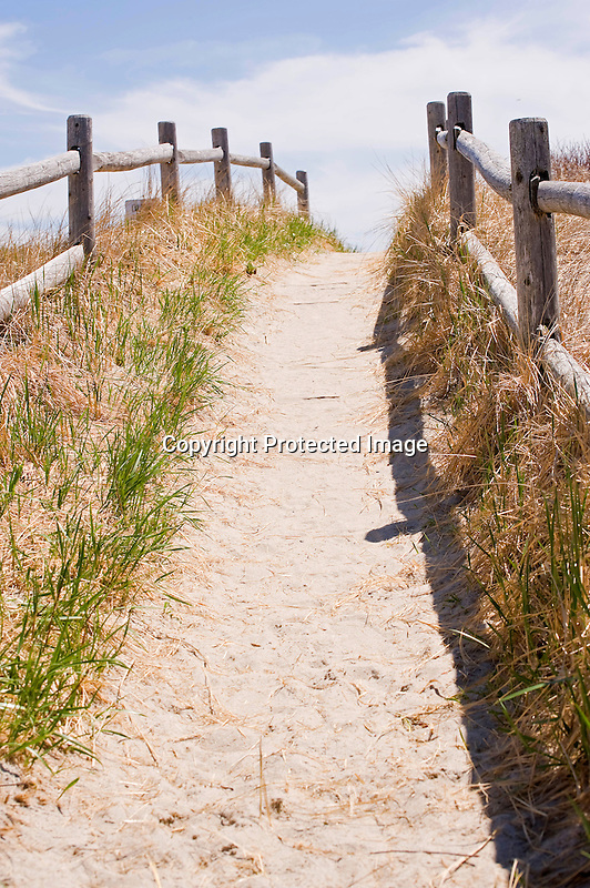 Pathway in Sand Dunes on Ocean Beach on Coast of Maine