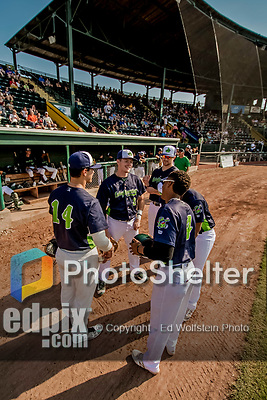 16 July 2017: A group of Vermont Lake Monsters gather in front of their dugout prior to a game against against the Auburn Doubledays at Centennial Field in Burlington, Vermont. The Monsters defeated the Doubledays 6-3 in NY Penn League action. Mandatory Credit: Ed Wolfstein Photo *** RAW (NEF) Image File Available ***