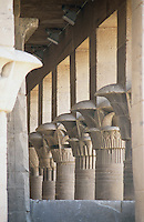 The elegantly carved columns in the Temple of Isis at Philae. Philae was at its height during the reigns of the Ptolemies in the Greco-Roman period and was the principal centre for the worship of Isis, the great goddess of magic.