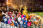 lighting of the Ardfert Nativity on Monday