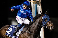 DUBAI, UNITED ARAB EMIRATES - MARCH 25: Jack Hobbs #2 ridden by William Buick (blue hat), celebrates after winning the Longines Dubai Shemma Classic at Meydan Racecourse during Dubai World Cup Day on March 25, 2017 in Dubai, United Arab Emirates. (Photo by Douglas DeFelice/Eclipse Sportswire/Getty Images)