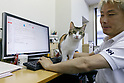 CEO Hidenobu Fukuda seen with a cat at Ferray Corporation on May 31, 2017, Tokyo, Japan. Tokyo IT company Ferray Corporation has adopted nine abandoned cats which now inhabit their offices in an attempt to reduce employee stress, and to increase productivity and office communication. According to CEO Hidenobu Fukuda, the original idea was to help abandoned cats by giving them a place to live, eat and sleep. Employees are even allowed to take the cats home after work and return with them the next day. The company encourages workers to look after cats outside the office too and pays a monthly stipend to employees who adopt rescue cats themselves, and staff can even bring their own pets too into the office. (Photo by Rodrigo Reyes Marin/AFLO)Reyes Marin/AFLO)