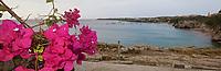 EC- Turtle Beach Taxi Max Curacao Tour - as part of HAL Koningsdam S. Caribbean Cruise, Curacao 3 19