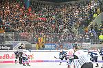 Die Mannheimer Fans in dem Spiel in der DEL, EHC Red Bull Muenchen (blau) - Adler Mannheim (weiss).<br /> <br /> Foto &copy; PIX-Sportfotos *** Foto ist honorarpflichtig! *** Auf Anfrage in hoeherer Qualitaet/Aufloesung. Belegexemplar erbeten. Veroeffentlichung ausschliesslich fuer journalistisch-publizistische Zwecke. For editorial use only.