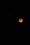 Lunar eclipse in the night sky