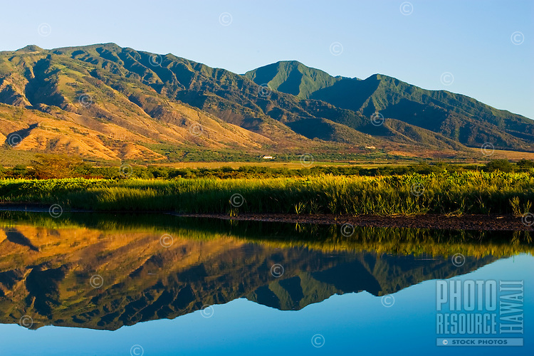 A very calm morning at Kealia Pond reflects the West Maui Mountains bathed in warm light.