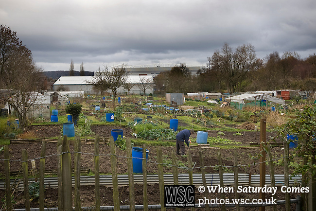 A man working on an allotment at the back of Ewood Park, home of Blackburn Rovers, on the day the club played host to Aston Villa in a Barclays Premier League match. Blackburn won the match by two goals to nil watched by a crowd of 21,848. It was Rovers' first match under the ownership of Indian company Venky's.